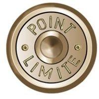 Cheville en laiton avec alliage de cuivre, tête Ø 30mm, 40mm, «POINT LIMITE» – 100 pièces