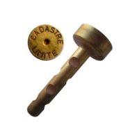 Cheville courte en laiton – «CADASTRE LIMITE» – boîte de 100 pièces