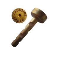 Chevilles grandes en laiton – «CADASTRE LIMITE» – boîte de 100 pièces